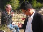Estma Consulting at Wine Pleasures