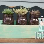 Succulent Plant Mason Jar Centerpiece  & Succulent Care!