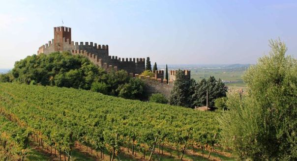 Soave-castle-and-vineyard