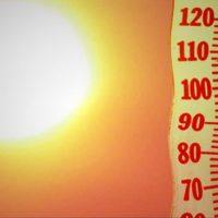 optimized-beat-the-heat