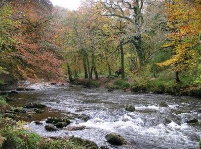 River Barle, Nr Dulverton