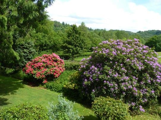 Winsbere Garden