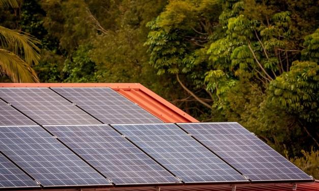 Solarmodule in Budenheim aus Kleingartenanlage entwendet