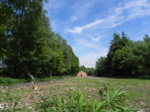 Wiesenhof 5