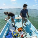 Center for Limnology grad student Jake Walsh and UW-Madison undergrad Carly Broshat use plankton nets to take samples of Daphnia pulicaria and spiny water flea in Lake Mendota. — Photo: Bryce Richter/UW-Madison