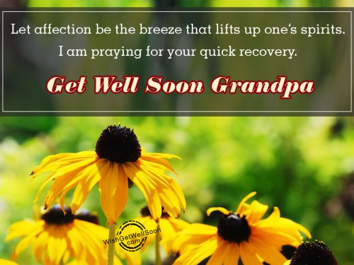 Medium Of Get Well Wishes