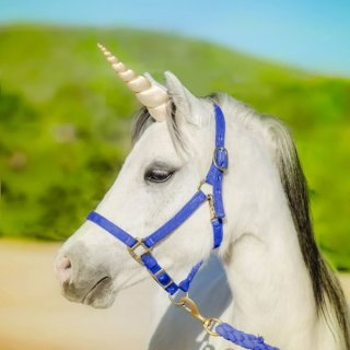 Wishpony Pale Gold Unicorn Horn for Horses & Ponies