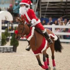 wishpony reindeer antlers santa clause barding set pony
