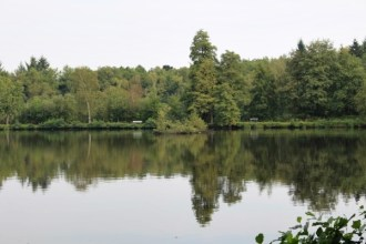 Kiewitdomein en Arboretum Bokrijk