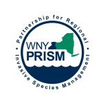 WNY PRISM Fall 2018 Newsletter
