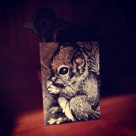 """SQUIRREL 