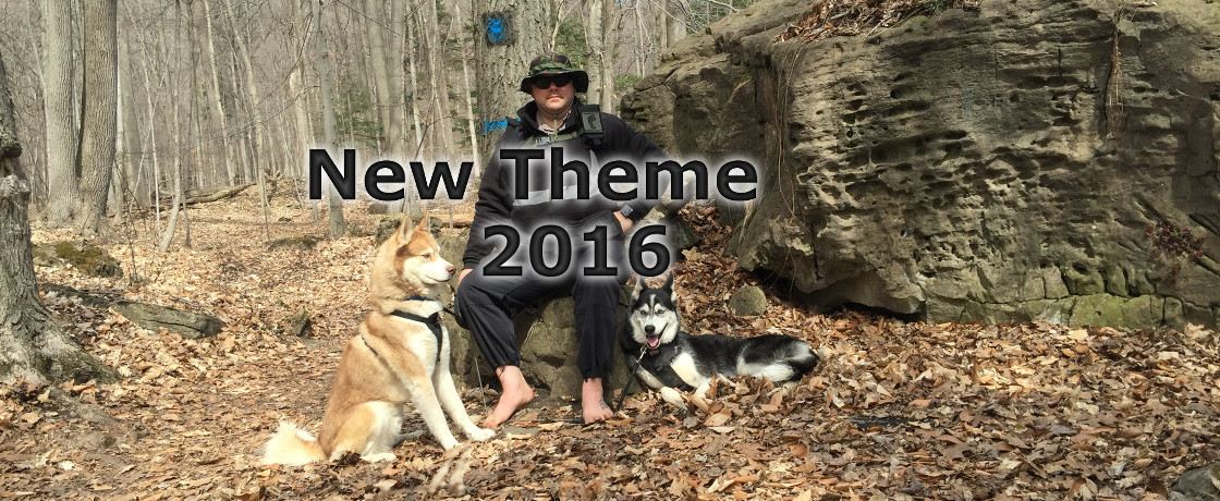 New theme of 2016