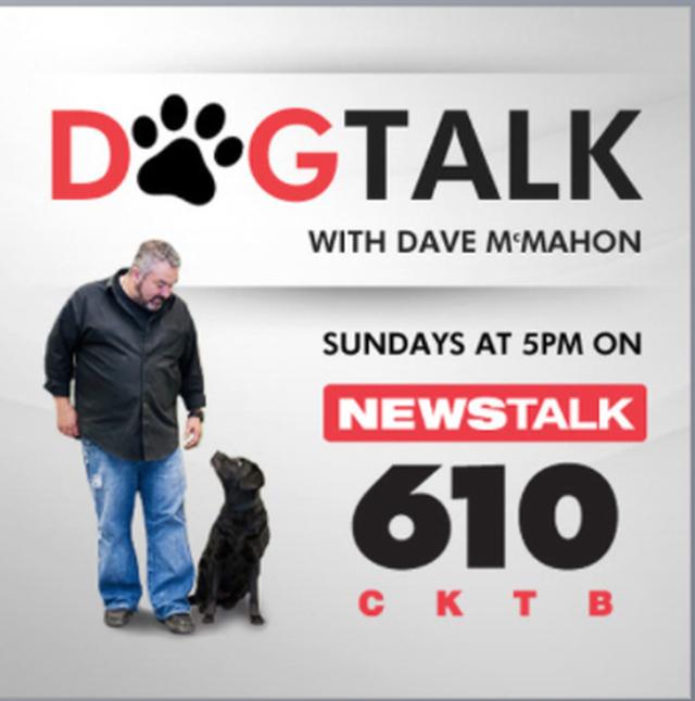 Dog Talk Radio