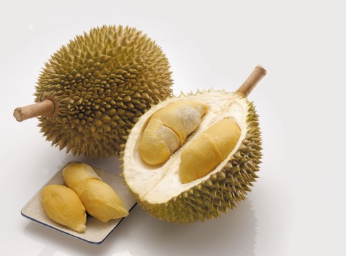 Medium Of Just Fruits And Exotics