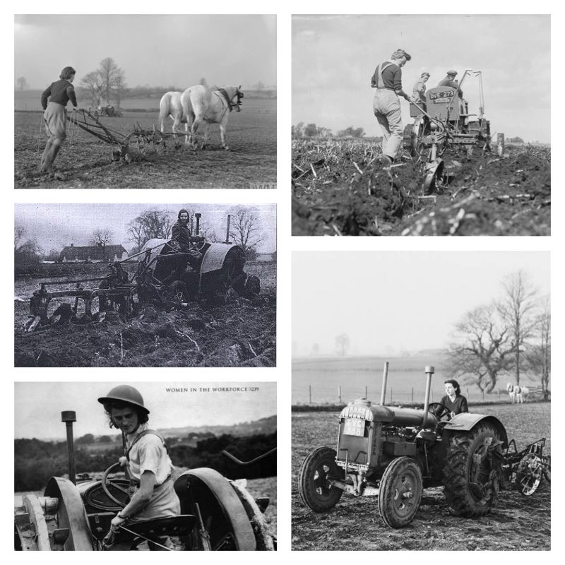 October Activity of the Month: Ploughing