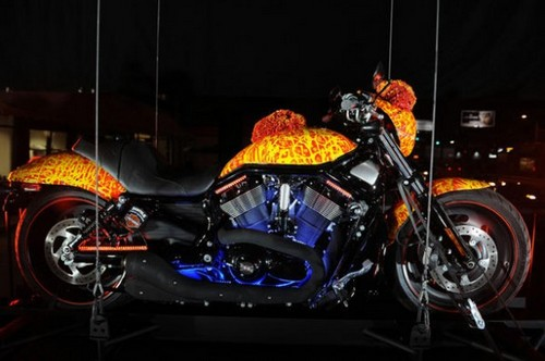 10 Most Expensive Bikes