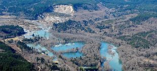 Weyerhaeuser Provides Disaster Assistance in Response to Oso, WA Landslide