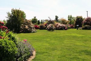Event-Rental_19_grounds