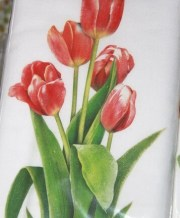 kitchen towel red tulips