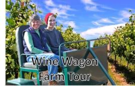 summer wine wagon_1