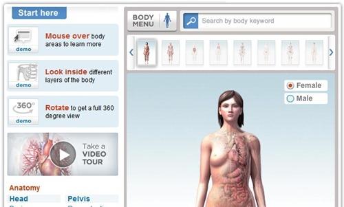 Mapa-del-cuerpo-humano-en-3D.jpg