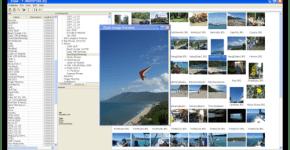 Elyse-organiza-archivos-con-etiquetas_thumb.png