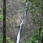 Tallest Waterfalls in Australia