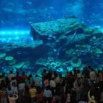 List of Amusement Parks and Centers in Dubai