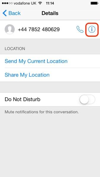 iPhone - Information Screen