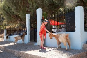 tame goats at Nanou beach, Symi, Greece - @World Travel Mama