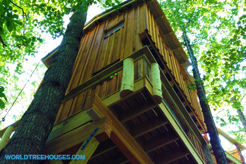 Brevard-Treehouse-World-Treehouses-NC
