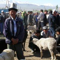 Kyrgyzstan: Wandering through the Karakol animal market