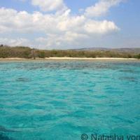 Bali: A Menjangan Island Dive Trip