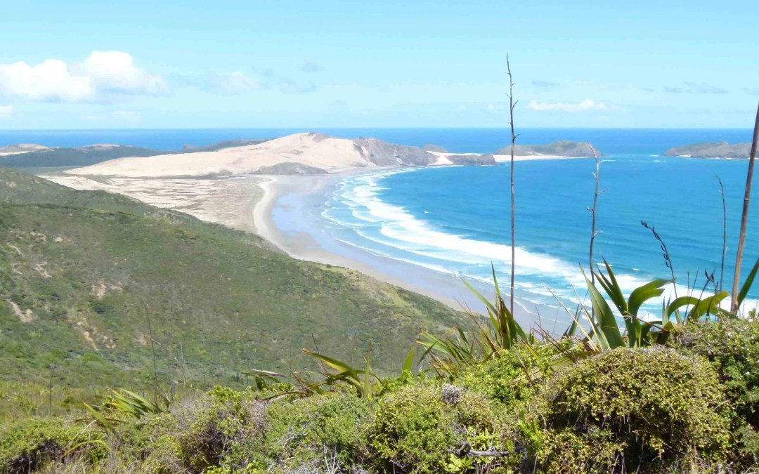Cape Reinga, Not Quite the End of the World