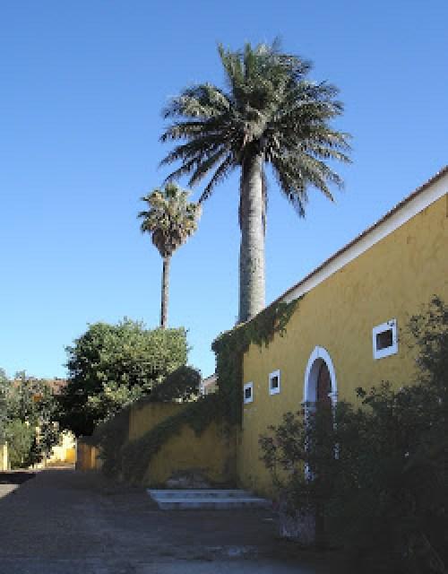 Quinta courtyard, Gradil, Portugal