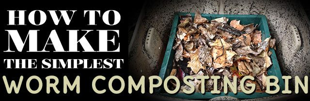 How to Make the Simplest Worm Composting Bin How to Make the Simplest Worm Composting Bin