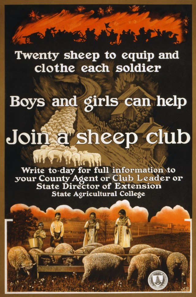 Sheep Club poster - found in the Wiki Commons and marked as being in the Publiic Domain