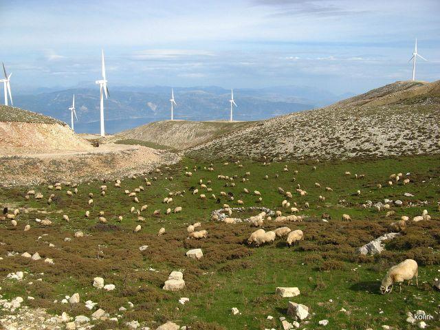 Windfarm & sheep grazing in Panachaiko Mountains, Greece - photo found on Wiki Commons and attributable to Koliri