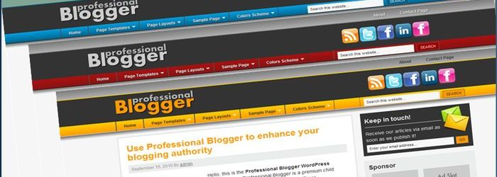 ProfessionalBloggerWordPressTheme