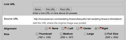 Adding An Image Source URL Field