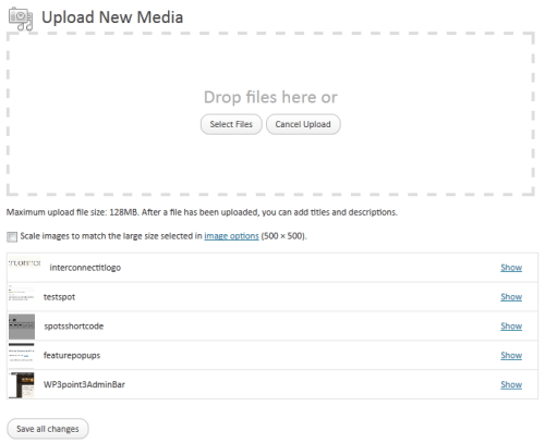 Multiple file Uploader In WordPress 3.3