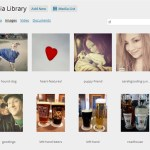WordPress Media Library Grid View
