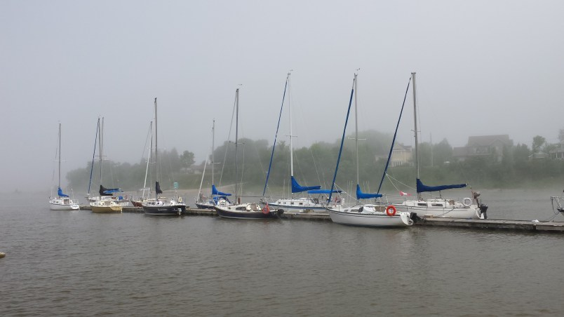 A Cool and Foggy June 21st