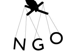 NGO -puppetteer-1396506684-428-640x480