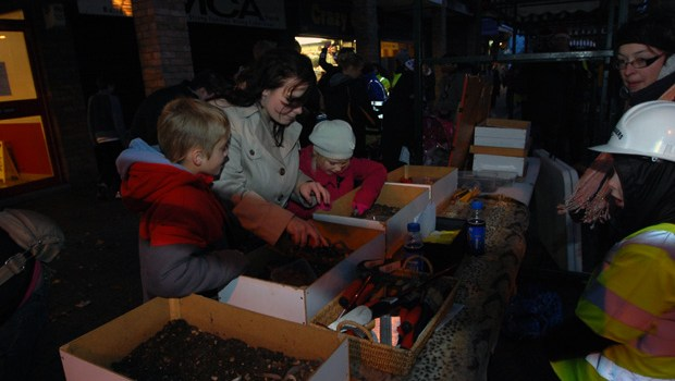 Wednesfield Lights 2012  (3)