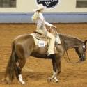 Meade County Fair – Sunday Western Horse Show