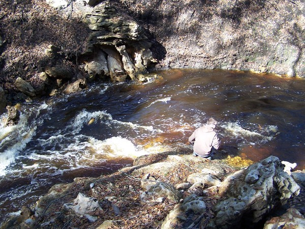 Dye test in Dead River Sink on Alapaha River