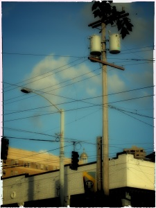 Digital Polaroid Transfer 1