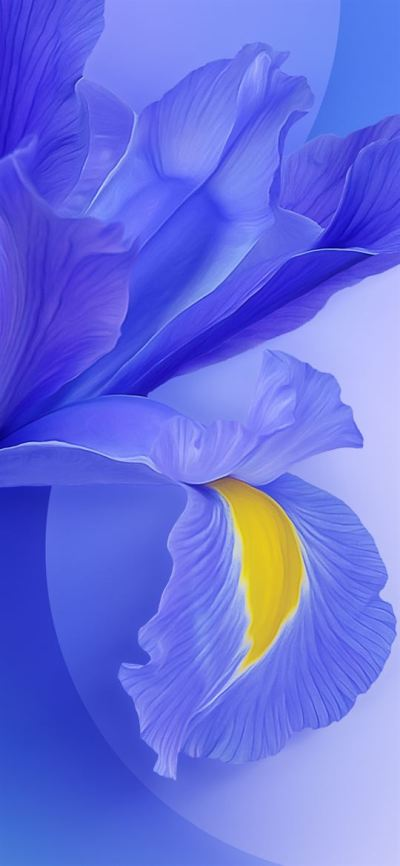 Download the Xiaomi Mi 9's Official Stock Wallpapers