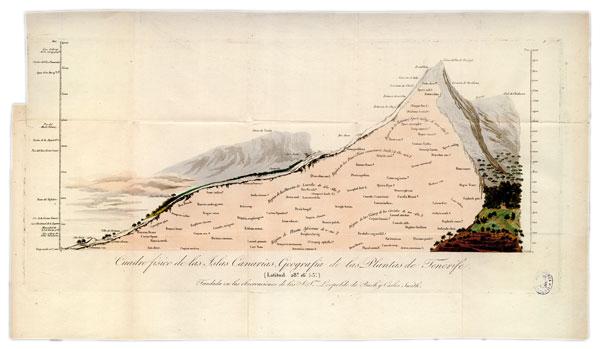 Viage a las regiones equinocciales del Nuevo Continente, hecho en 1799 hasta 1804 por Alexander von Humboldt y A. Bonpland